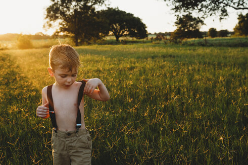 Shirtless boy wearing suspenders while standing amidst plants on field during sunset - CAVF44690