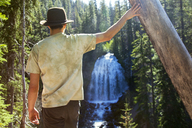 Rear view of man standing by tree trunk against Chush Falls - CAVF44804