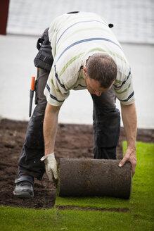 Mid adult man rolling new grass turf in lawn - MASF06206
