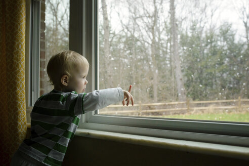 Boy looking through window while standing at home - CAVF45976