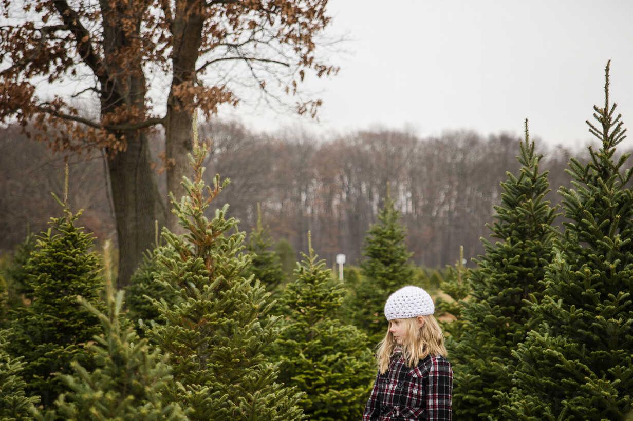 Side view of cute girl looking at pine trees while standing in farm - CAVF46012 - Cavan Images/Westend61