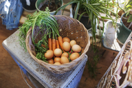 Overhead view of eggs and vegetables in basket on table at greenhouse - CAVF46210