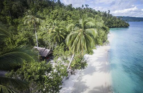 High angle idyllic view of shore at Raja Ampat Islands - CAVF47352