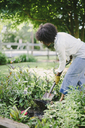 Woman digging soil with shovel in garden - CAVF48139