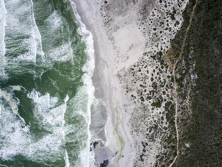 West Coast National Park, Western Cape, South Africa - DAWF00642