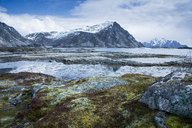 Moss covered rocks among remote fjord and mountains, Langraget, Lofoten, Norway - CAIF20348