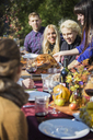 Woman serving roasted chicken to friends at outdoor table during garden party - CAVF48211