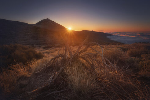 Spain, Canary Islands, Tenerife, Teide National Park at sunset - DHCF00185