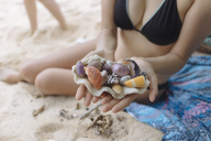 Young woman at the beach holding seashells - KNTF01122