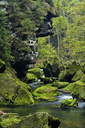Czech Republic, Bohemian Switzerland, Ticha Souteska near Hrensko, River Kamnitz in the Edmundsklamm with moss covered sandstone rocks - RUEF01854