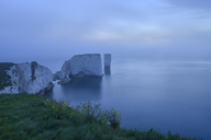 Great Britain, England, Dorset, Jurassic Coast, Isle of Purbeck, Old Harry Rocks and fog - RUEF01860