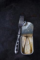 Opened sardine can and fork on dark ground - CSF29140