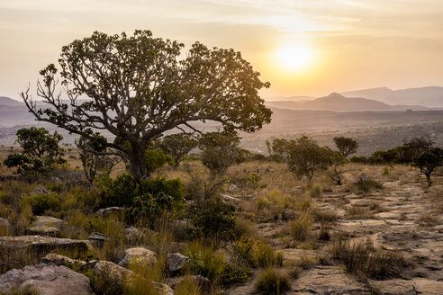 Africa, South Africa, Mpumalanga, Panorama Route, Blyde River Canyon Nature Reserve at sunset - WEF00442