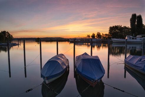 Switzerland, Thurgau, Kreuzlingen, Lake Constance, harbour, boats in the morning light - SH02017