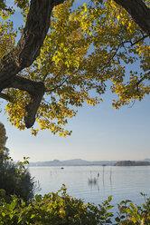 Germany, Baden-Wuerttemberg, Lake Constance, Reichenau, Niederzell, View to Hegau - SH02032