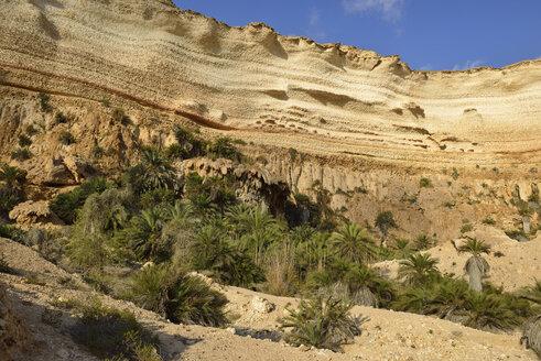 Oman, Dhofar, limestone canyon of Wadi Shuwaymiyah - ESF01644