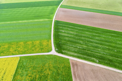 Germany, Baden-Wuerttemberg, Rems-Murr-Kreis, Aerial view of fields in spring - STSF01538