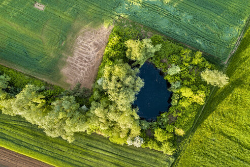 Germany, Baden-Wuerttemberg, Winterbach, Aerial view of pond and fields - STS01544
