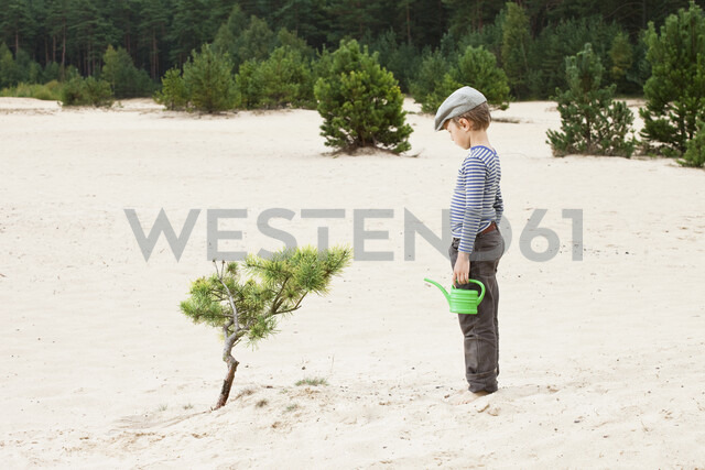 Boy with watering can, looking at plant in sand - ISF00396 - sah/Westend61