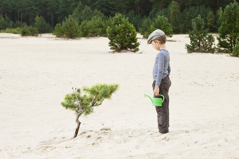 Boy with watering can, looking at plant in sand - ISF00396