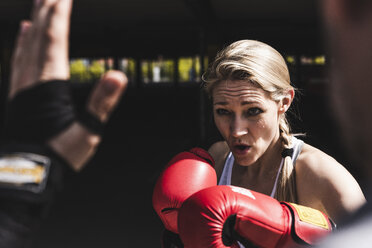 Man and woman in boxing training - UUF13627
