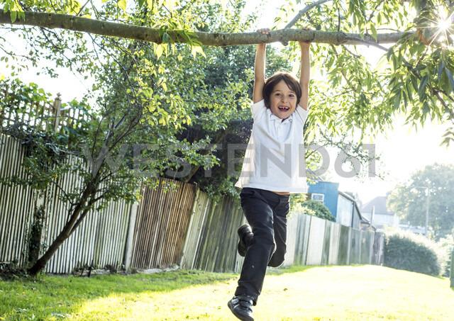 Boy having fun swinging on tree branch - CUF01895