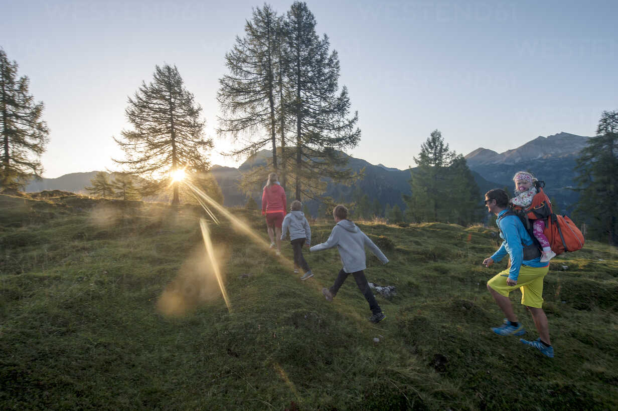 Family hiking in alpine meadow at sunset - HHF05556 - Hans Huber/Westend61