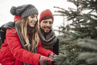 Young couple looking at pine needles while shopping for christmas tree from forest - CUF02922