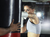Boxer training in gym - CUF03144