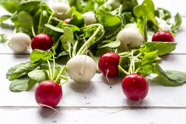 Red and white radish on white wood - SARF03731