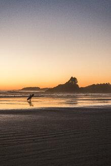 Tofino, Vancouver Island, British Columbia, Canada - CUF04102
