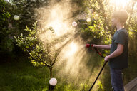 Boy using garden hose for watering tree in the garden - SARF03732