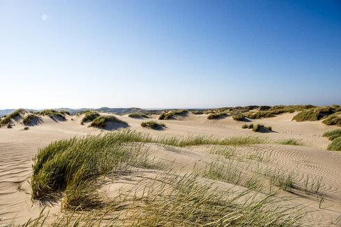 Germany, Schleswig-Holstein, Sylt, sand dunes - EGBF00243