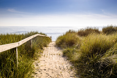 Germany, Schleswig-Holstein, Sylt, path through dunes - EGBF00258