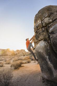 Male boulderer moving up boulder in Joshua Tree National Park at dusk, California, USA - CUF04925