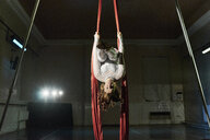 Young female aerial acrobat upside down on red silk ropes - CUF05505