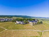 Germany, Hesse, Rheingau, Geisenheim, vine yards and Castle Johannisberg - AMF05723