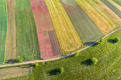 Germany, Baden-Wuerttemberg, Rems-Murr-Kreis, Aerial view of fields - STSF01554