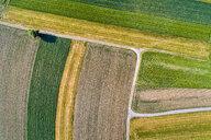 Germany, Baden-Wuerttemberg, Rems-Murr-Kreis, Aerial view of fields - STSF01557