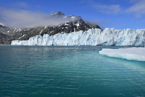 Greenland, East Greenland, Knud Rasmussen Glacier - ESF01662