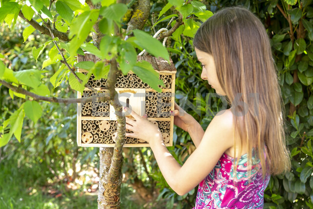 Girl hanging up insect hotel in the garden - SARF03757