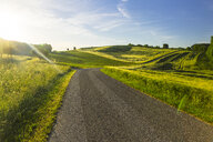Austria, Innviertel, empty country road and fields against the sun - AIF00489