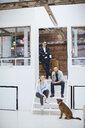Portrait of male and female design team with dog on design studio stairs - CUF06915