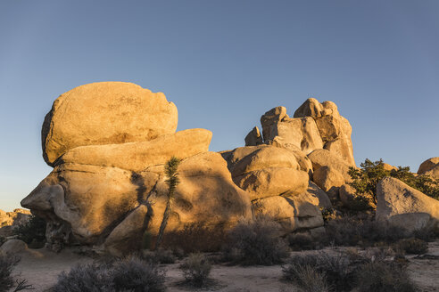 Rock formations at sunset in Joshua Tree National Park at dusk, California, USA - CUF07386