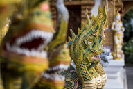 Rows of dragons at buddhist temple, Chiang Mai, Thailand - CUF07601