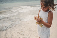 Girl playing with dry seaweed on beach, Cancun, Mexico - ISF01624