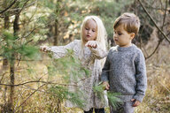 Siblings looking and pointing at tree in forest - ISF01809