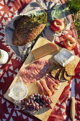 Overhead view of fresh picnic food with cheese, salami and grapes - ISF01845