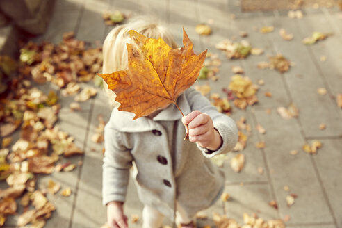 Girl holding autumn leaf in front of face - CUF08491