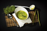 Asparagus cream soup with green asparagus - MAEF12593